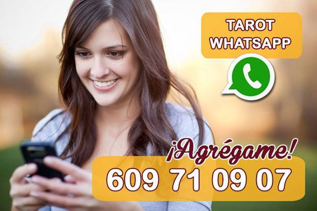 tarot whatsapp